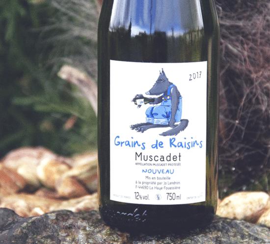 Grains De Raisins - Muscadet Sèvre et Maine Jo Landron